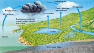 круговорот-воды-в-природе-схема-